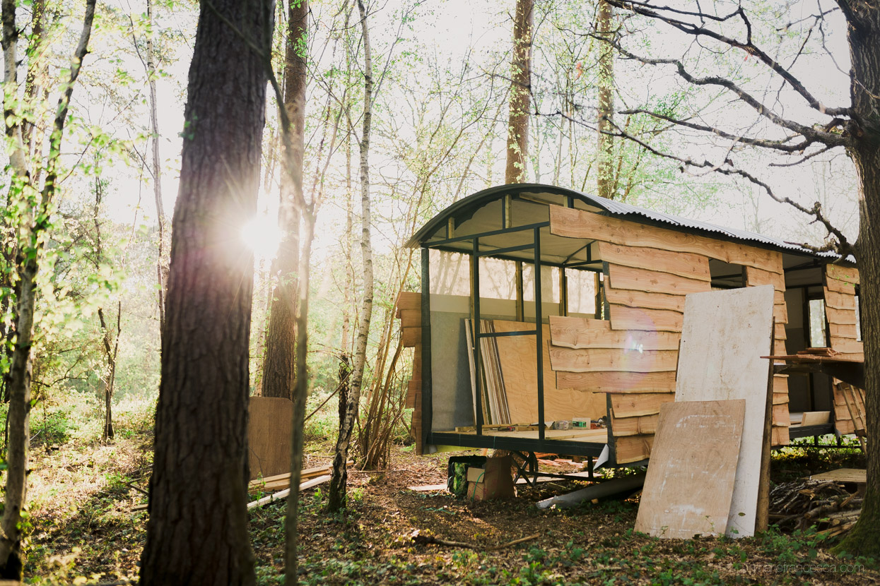 Secret cabins in the woods at Corcovado